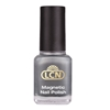 Magnetic Moments - Magnetic Effect Polish