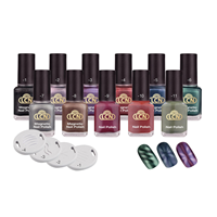 Magnetic Polish Starter Kit